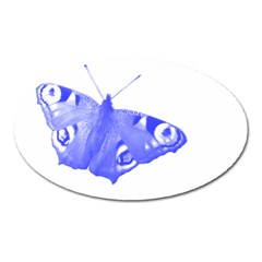 Decorative Blue Butterfly Magnet (Oval)