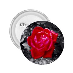 Red Rose 2.25  Button