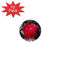 Red Rose 1  Mini Button (10 Pack)