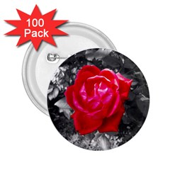 Red Rose 2.25  Button (100 pack)