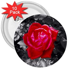 Red Rose 3  Button (10 pack)