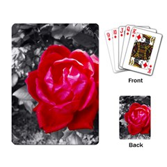 Red Rose Playing Cards Single Design