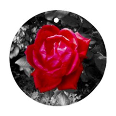 Red Rose Round Ornament (Two Sides)