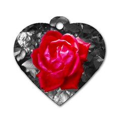 Red Rose Dog Tag Heart (two Sided)