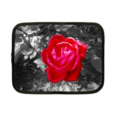 Red Rose Netbook Sleeve (small)