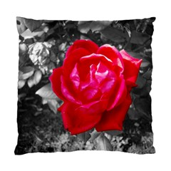 Red Rose Cushion Case (Single Sided)
