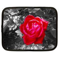 Red Rose Netbook Sleeve (xl)