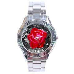 Red Rose Stainless Steel Watch