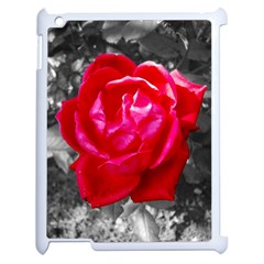 Red Rose Apple Ipad 2 Case (white)
