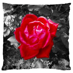 Red Rose Large Cushion Case (Single Sided)
