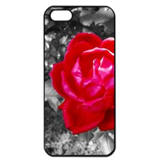 Red Rose Apple Iphone 5 Seamless Case (black)