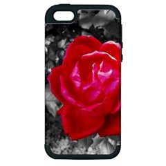 Red Rose Apple iPhone 5 Hardshell Case (PC+Silicone)