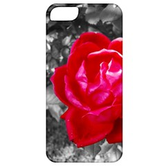 Red Rose Apple Iphone 5 Classic Hardshell Case