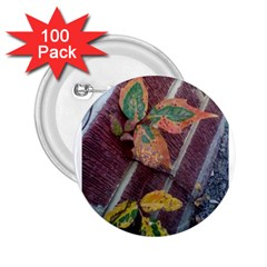 A Leaf In Stages 2 25  Button (100 Pack)