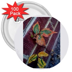 A Leaf In Stages 3  Button (100 Pack)
