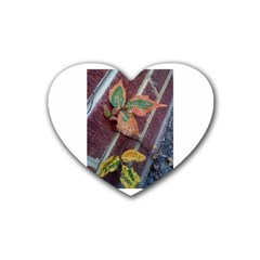 A Leaf In Stages Drink Coasters 4 Pack (heart)