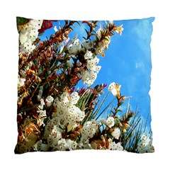 Australia Flowers Cushion Case (Two Sided)