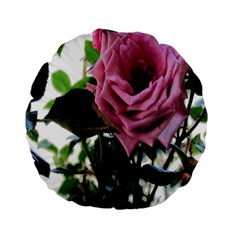 Rose 15  Premium Round Cushion