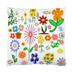 Summer Florals Cushion Case (single Sided)