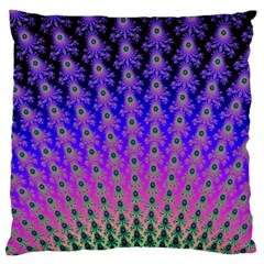 Rainbow Fan Large Cushion Case (Single Sided)