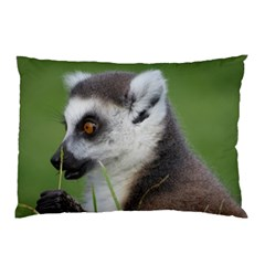 lemur Pillow Case