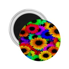 Colorful Sunflowers 2.25  Button Magnet