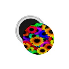 Colorful Sunflowers 1.75  Button Magnet