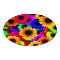 Colorful Sunflowers Magnet (oval)