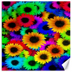 Colorful Sunflowers Canvas 12  x 12  (Unframed)