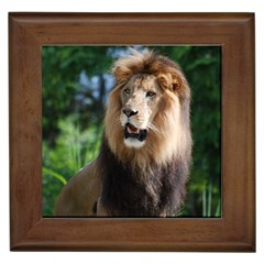 Regal Lion Framed Ceramic Tile