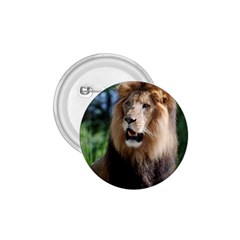 Regal Lion 1 75  Button
