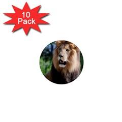 Regal Lion 1  Mini Button Magnet (10 Pack)