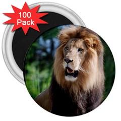 Regal Lion 3  Button Magnet (100 pack)