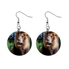 Regal Lion Mini Button Earrings