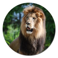Regal Lion Magnet 5  (round)