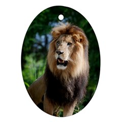 Regal Lion Oval Ornament (Two Sides)