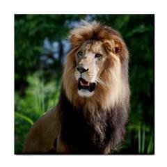 Regal Lion Face Towel