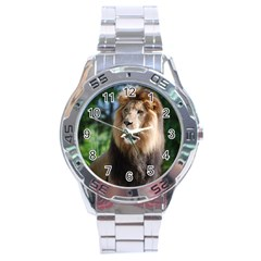 Regal Lion Stainless Steel Watch