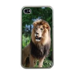 Regal Lion Apple iPhone 4 Case (Clear)