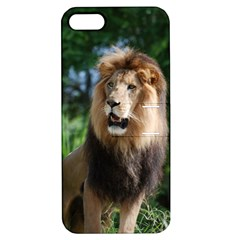 Regal Lion Apple iPhone 5 Hardshell Case with Stand