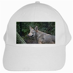 Shdsc 0417 10502cow White Baseball Cap