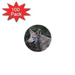 Shdsc 0417 10502cow 1  Mini Button (100 pack)