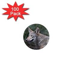 Shdsc 0417 10502cow 1  Mini Button Magnet (100 Pack)