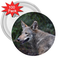 Shdsc 0417 10502cow 3  Button (100 Pack)