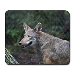 Shdsc 0417 10502cow Large Mouse Pad (rectangle)