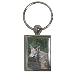 Shdsc 0417 10502cow Key Chain (Rectangle)