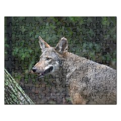 Shdsc 0417 10502cow Jigsaw Puzzle (Rectangle)