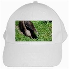 Giant Anteater White Baseball Cap