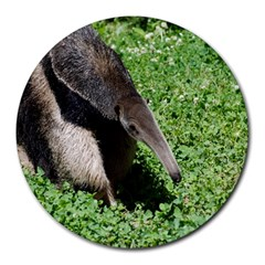 Giant Anteater 8  Mouse Pad (Round)