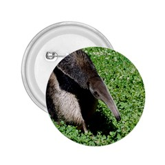 Giant Anteater 2.25  Button